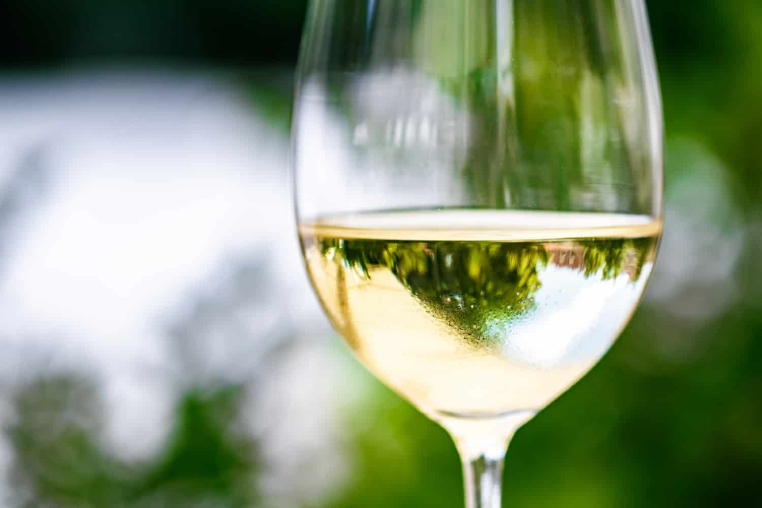 white-wine-in-luxury-restaurant-on-summer-garden-terrace-wine-tasting-experience-at-winery-in-the-vi
